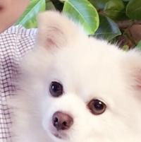 [마승훈]
